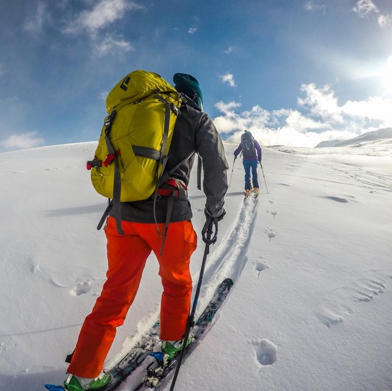 IRIS backcountry ski